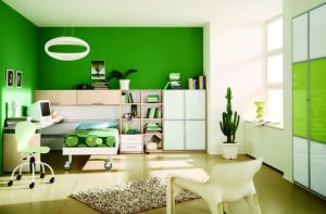 Stunning-green-houses-interior-design-in-kids-bedroom-as-well-brown-fur-rug-on-floor-as-well-elegant-tru