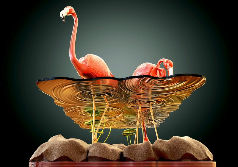 Beautiful-Table-Concept-Like-Flamingos-in-A-Pond-2