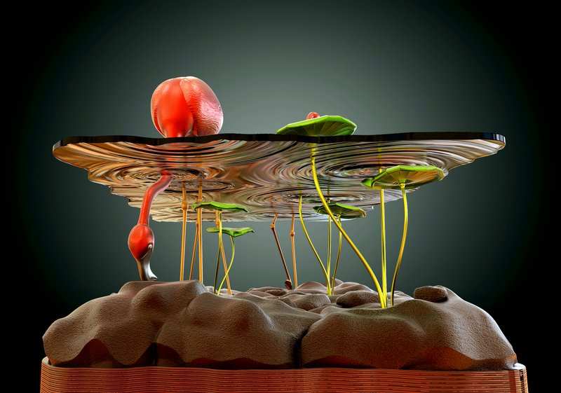 Beautiful-Table-Concept-Like-Flamingos-in-A-Pond-3