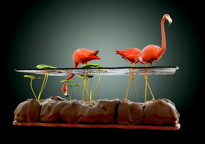 Beautiful-Table-Concept-Like-Flamingos-in-A-Pond-5